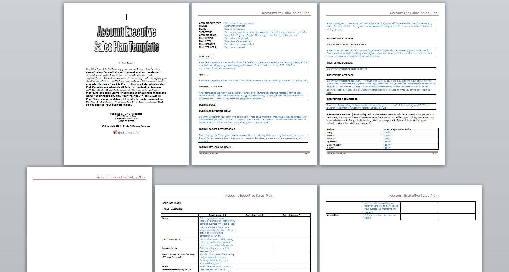account executive sales plan template
