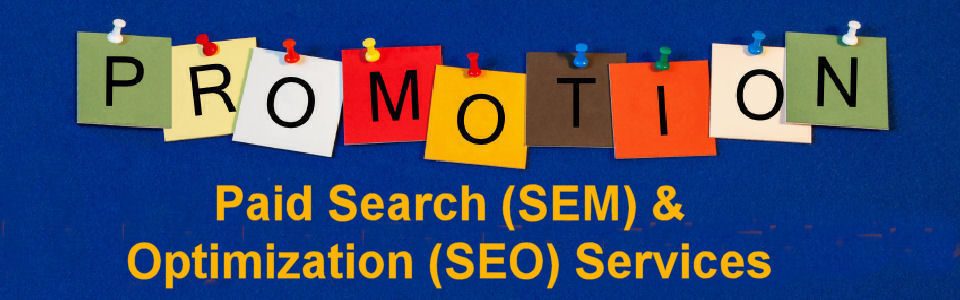 Paid Search (SEM) & Optimization (SEO) Services