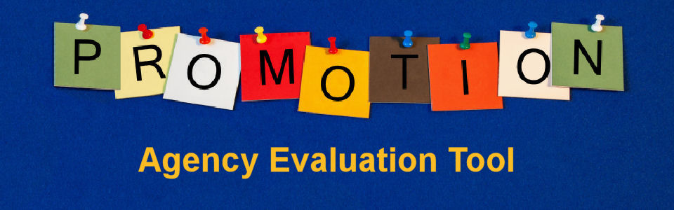 DWS Associates Marketing Agency Evaluation Tool